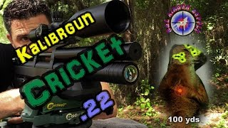 getlinkyoutube.com-Kalibrgun Cricket Standard .22 Bullpup Airgun Review