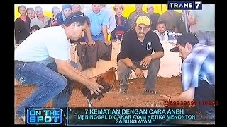 getlinkyoutube.com-On The Spot - 7 Kematian Dengan Cara Aneh