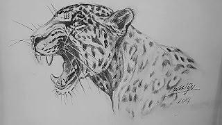 getlinkyoutube.com-Hoe teken je een Grommende Jaguar / dieren tekenen / #24