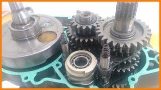 KTM 250 EXC Desmontagem e Montagem do Motor   THE MONSTER IS BACK 🏁