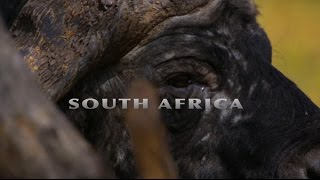 getlinkyoutube.com-Blaser R8 South Africa