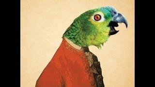 getlinkyoutube.com-Parrot singing opera (original video)
