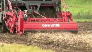 getlinkyoutube.com-Dewulf Kwatro - 4-row self-propelled potato harvester