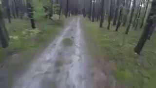 Ατυχος τυπος στο δασος , τον κυνηγαει ΑΡΚΟΥΔΑ!!