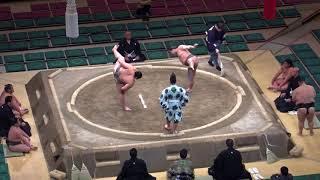 美-奄美将/2018.1.21(3)/chura-amamishou/day8 #sumo