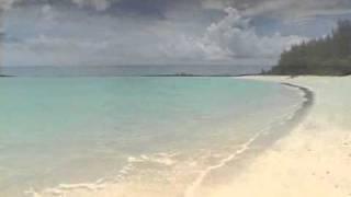 getlinkyoutube.com-Sarah McLachlan .. Path Of Thorns ...lyrics below video