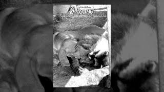 getlinkyoutube.com-The Hound That Thought He Was A Raccoon
