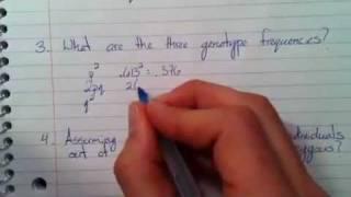 getlinkyoutube.com-Hardy-Weinberg Example Problem