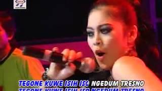 Utami DF   Ngedum Tresno (Official Music Video)