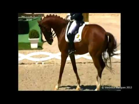 That Power - Equestrian