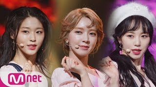 [AOA - Excuse me] Special Stage | M COUNTDOWN 170119 EP.507