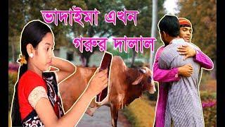 Bangla Comedy Video।ভাদাইমা এখন গরুর দালাল।kurbanir goru। New Bangla Funny Video 2017 । New Vadaima