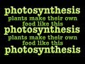 photosynthesis song: chloroplasts and chlorophyll