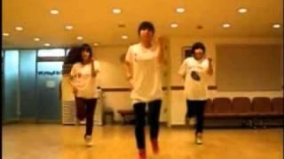 SNSD - Gee Dance [Mirrored]