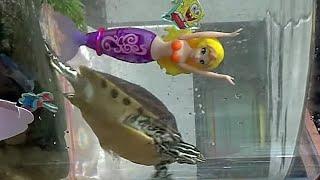 getlinkyoutube.com-로봇피쉬 인어공주, 수족관 물속에서 자유롭게 수영 헤엄을 하는 장난감 완구 구입 사용기 리뷰