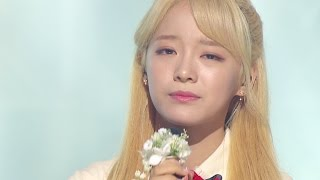 getlinkyoutube.com-《MOURNFUL》 SEJEONG(gugudan) (세정(구구단)) - Flower way (꽃길) @인기가요 Inkigayo 20161204