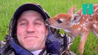 getlinkyoutube.com-Man Saves Abandoned Baby Deer