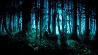 getlinkyoutube.com-Dark Forest/Goa/Twilight/Progressive Psy Trance Mix - 2013 - ToPsy Turvey - EckoTek Soundsystem