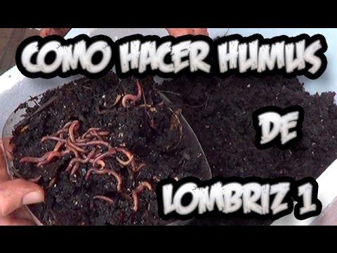 Como Hacer Humus De Lombriz #1 || Abono Organico || La Huertina De Toni