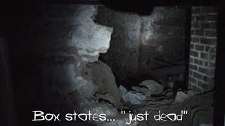 getlinkyoutube.com-Real Sounds of Hell (Disturbing!) ghost paranormal