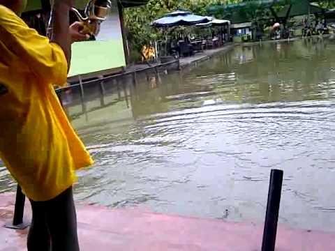 Mancing BAWAL MONSTER  di Lubana Sengkol Part II by Githa
