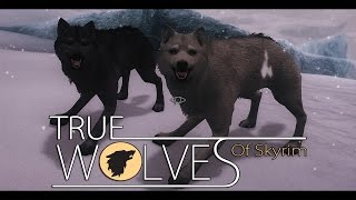 getlinkyoutube.com-TES V - Skyrim Mods: True Wolves Of Skyrim