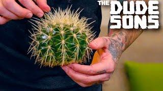 getlinkyoutube.com-Impossible Cactus Hacky Sack Challenge!