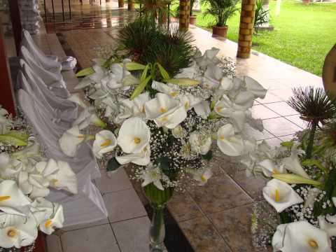 Fotos de ornamentação casamento ornamentação de festa HD 1440p  simples