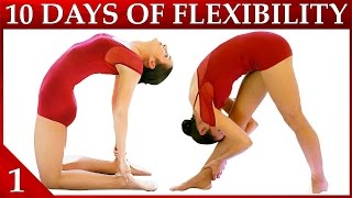 getlinkyoutube.com-10 Day Flexibility Challenge Day 1 – Basic Stretches & Warmup Workout Dance with Catherine