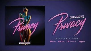 PRIVACY - CHRIS BROWN karaoke version ( no vocal ) lyric instrumental