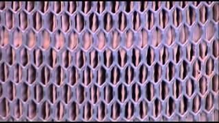 getlinkyoutube.com-Qué es correcto y qué es incorrecto para los filtros de aire Donaldson