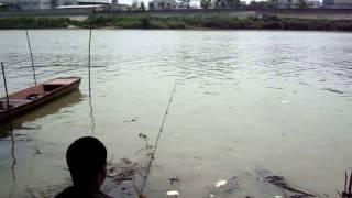 getlinkyoutube.com-ตกปลากับ โจ้ เจ้าพระยา ตอน ตี๋เล็กโชว์เดี่ยว