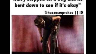 getlinkyoutube.com-One Direction - cute & funny pics PART 3