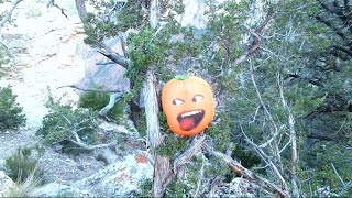 getlinkyoutube.com-The Stupid Orange In The Grand Canyon Fall