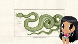 getlinkyoutube.com-Anaconda song
