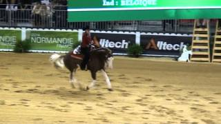 getlinkyoutube.com-WEG 2014 Colonels Shining Gun