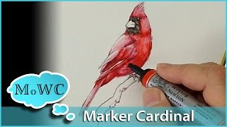 getlinkyoutube.com-How to Paint a Cardinal with Winsor Newton Watercolor Markers