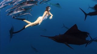Roberta Mancino Dives With The Fastest Fish in the World