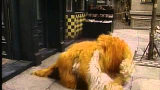 getlinkyoutube.com-Sesame Street - In and Out with Barkley