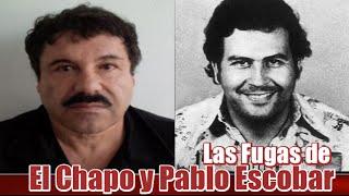 getlinkyoutube.com-El Chapo Guzmán y Pablo Escobar