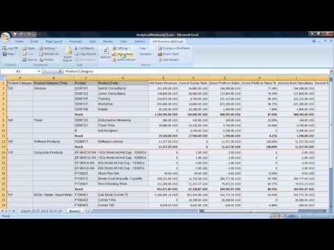 Using SAP Business ByDesign Analytics to Manage Financial Performance: Solution Demo