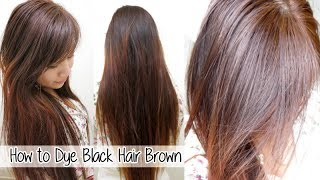 getlinkyoutube.com-How to Dye Hair from Black to Brown Without Bleach l Loreal HiColor: Vanilla Champagne