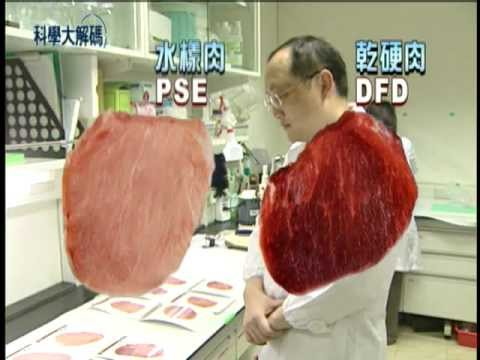 1. 哪種肉質好?