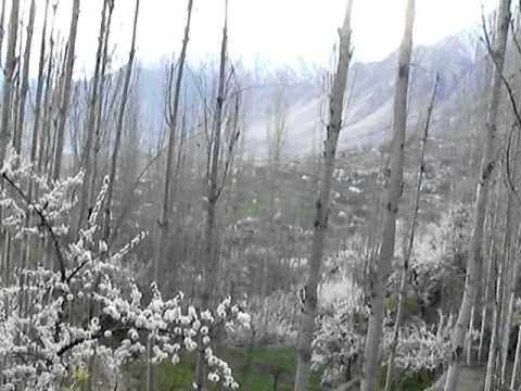 Spring in Hunza Karimabad April 13, 2014 I