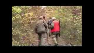 getlinkyoutube.com-Niccioleta : battuta di caccia al cinghiale
