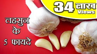5 Health Benefits of Garlic in Hindi - लहसुन के 5 लाभ by Sonia @ jaipurthepinkcity.com
