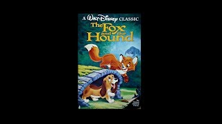 Digitized Opening To The Fox And The Hound (USA VHS)