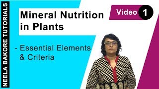 Mineral Nutrition in Plants - Essential Elements & Criteria