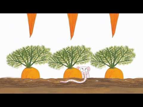 A história de Pomelo (livro infantil)