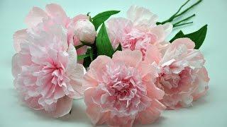 Jak zrobić piękne delikatne  peonie z bibuły # Crepe paper peony DIY